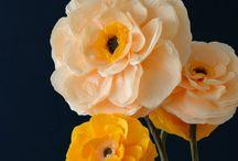 fleurs geantes