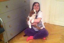 Já A Můj Pejsek Charlie/Me And My Dog Charlie / Já/Me