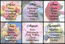 Calendar flori