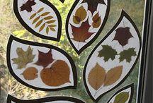 Découvrir automne creche