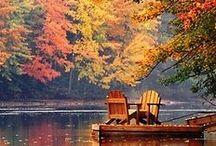 Fall / fall
