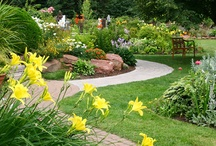 Backyard and Garden Ideas / With five acres, we could do so much out there!! Garden and backyard inspiration/information / by Eliesa @ Pinterest Addict