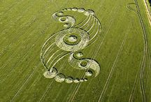crop circles / by Carla Preston