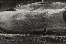 Eugen WISKOVSKY / Autor jednej z najbardziej radykalnych interpretacji reguł Nowej Rzeczowości i konstruktywizmu. Eksplorując wyobraźnię, powiększając szczegóły i używając ich poza kontekstem, przekładając barwną rzeczywistość na czarno-białą fotografię, czy rytmicznie powtarzając motywy, artysta dokonał przemiany konwencjonalnej percepcji przedmiotów i często odkrywał jej nieoczekiwane, symboliczne znaczenia.