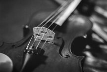 Photos # Violins & stylings