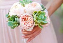 Wedding | Bridesmaids Bouquets / by Jennifer Kahane