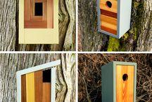 Fugle i haven | Birds in the garden / Sådan får du flere fugle i din have