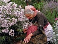 Tasha Tudor: My role model