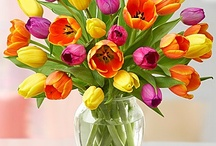 The Beauty in Flowers!