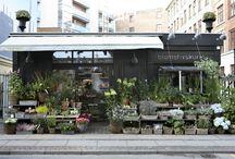 Florist shops / Florist shops and  market