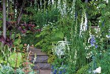 Gardens / Garden inspiration