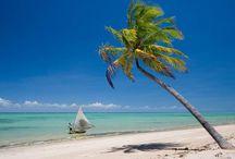 S  Ã  O     M  I  G  U  E  L    D  O  S   M  I  L  A  G  R  E  S   .   PRÓXIMA VIAGEM!! (A L) / Vilarejo no litoral de Alagoas São Miguel dos Milagres, AL, minha próxima viagem...