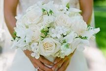Liz's Wedding / by Kim Norris
