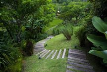 Home / Decor, Design, Gardens, everything for a beautiful and inviting home. Details. / by Mar