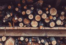 Wood inspiration