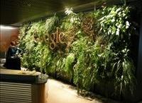 green branding / green branding, green walls, logos