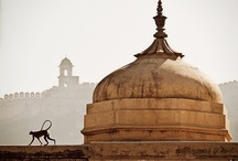 India, Our Home