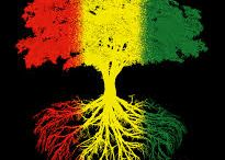 rasta roots