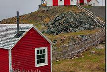 Newfoundland / by Kimberley Davis