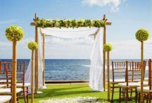 Inspiration for the Wedding...i still dream of;/