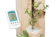 Father's Day Gifts / Great gift ideas for Dad by NZ Trees Please!