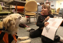 Pet Partner Therapy Team / by Donna Peisel