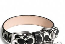 Dog Collar Designs & Styles / We know that besides being functional, you would like a dog collar that would fit the appearance and personality of your dog (and maybe even you!). We have the most popular dog collar designs in the market. Whichever you choose, we guarantee that you will find the best selling dog collar styles.