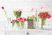 iHeart Tulips