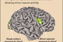 Mirror neurons - myths, critical views and reasearch