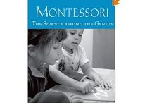 brain function & development: montessori