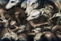 HOUNDS ♥ ♥ ♥ / i am a great hound lover .. have 5 of my own / by Mimulux Patricia No