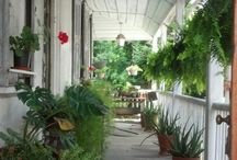 Southern Porches / Comfort and charm!