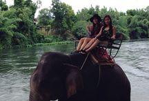ahhmazing Thailand