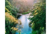 Mount Lofty Experiences