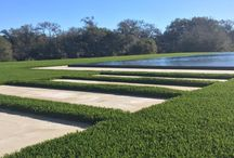 Eco Conscious Modern Design Solutions / LawnPop design solutions using water conservation methods by reducing water usage in the landscape. Austin Texas