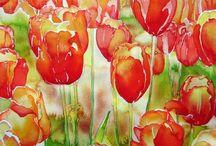 Flores acurela