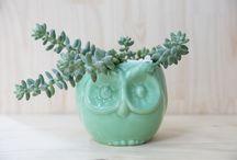 Our Lovely Planters / Beautiful ceramic handmade planters, designed by us specially for you! #habibiplantitas #welovehabibi #habibilovers #ceramic #succulents #succulove #nature #natureisspeaking