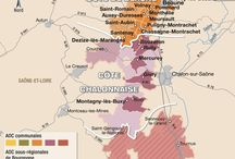 wine regions and terroirs