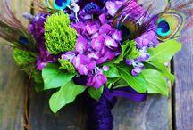 Flowers i love / by Sarah Corrado