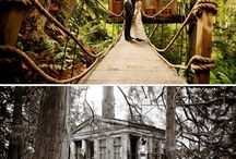 Tree Houses... / by Chickie