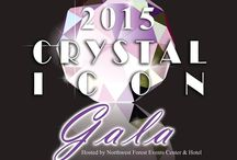 Crystal Icon 2015 / Crystal Icon is the annual awards gala held by ISES Houston to award Houston's best event professionals for their outstanding events during the year. On Sunday, August 2nd, Crystal Icon was held at the Northwest Forest Conference Centre in Cypress, Texas.
