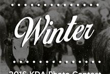 2016 KDA Photo Contest: Winter / Repin your favorite winter photos to vote!