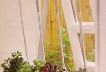greenhouse ideas / by Rachael Mcdaniel
