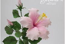 pasta goma flores