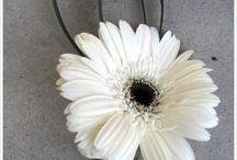 gerbera wedding flower