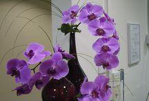 Lily Jones Corporate Floral designs