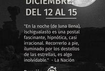 Luna Llena en Ischigualasto / Experiencias de excursiones en Luna Llena en Ischigualasto