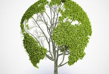 Go Green Ideas / Some useful tips on how to help keep our planet green and save energy
