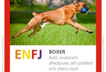 Dog Type table / Dog Types that represent each of the MBTI Type characteristics