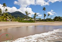 """Nevis / Nevis is a 36 square-mile island, the center of which is Nevis Peak, which rises 3,232 feet.  Nevis was discovered by Christopher Columbus in 1493, and was named """"Nuestra Senora de Las Nieves,"""" """"Our Lady of the Snows,"""" a description of the small cloud, resembling snow, which is nearly always present at its peak. It lies just two miles off the coast of St. Kitts, its sister island. Nevis offers something for everyone, from the history lover, to the beach lover, to the nature enthusiast."""